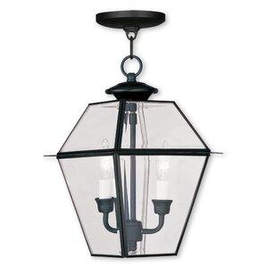 orchard lane 2light outdoor hanging lantern