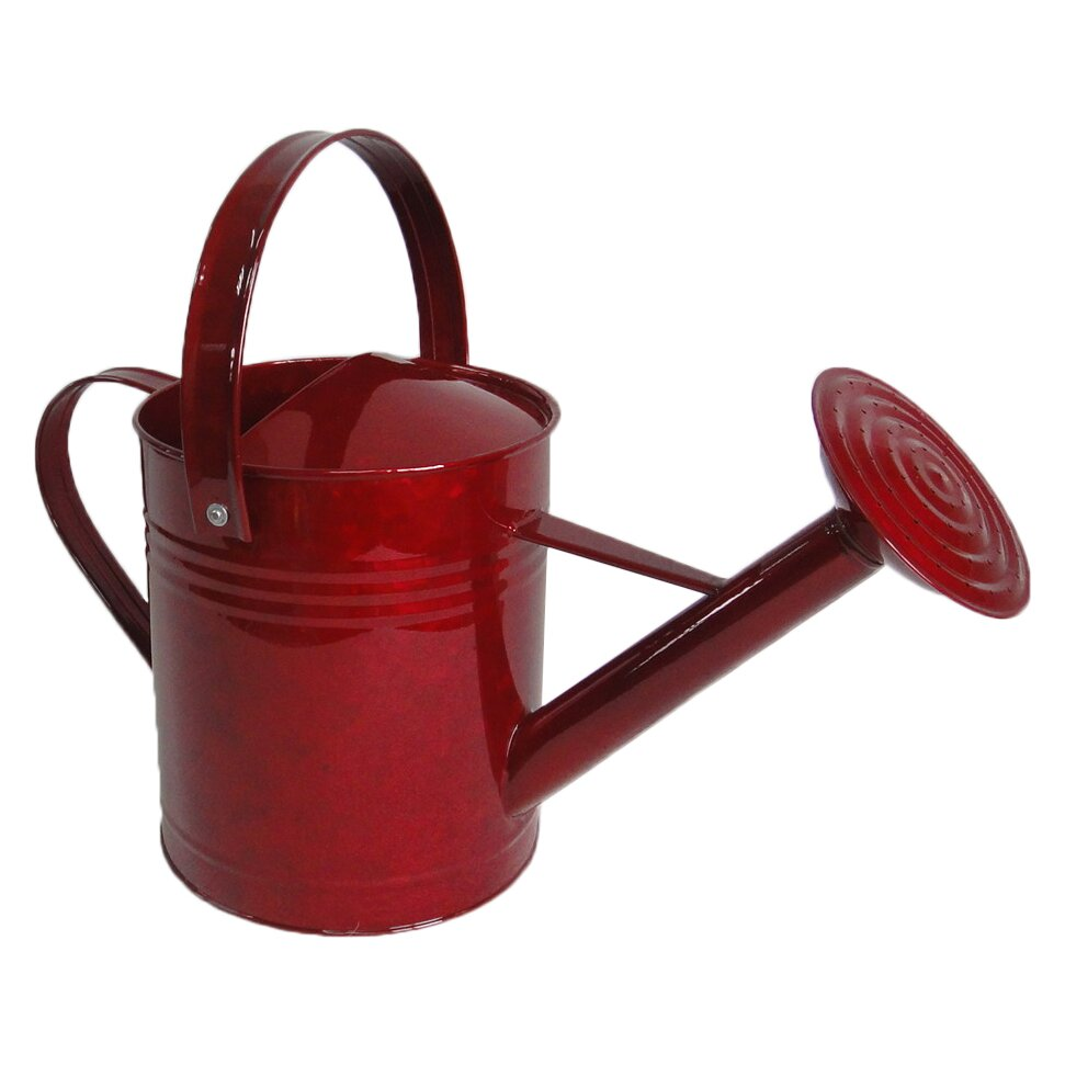 Griffith creek designs 1 5 gallon metal watering can reviews - Gallon metal watering can ...