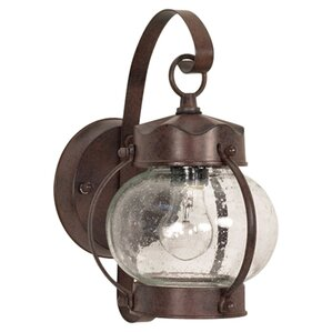 Elsa 1-Light Outdoor Wall Lantern