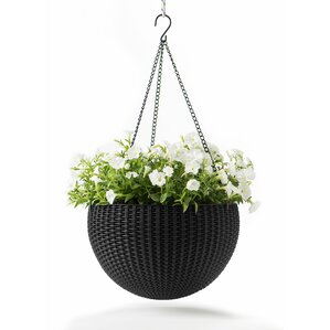 Rory Hanging Planter (Set of 2)