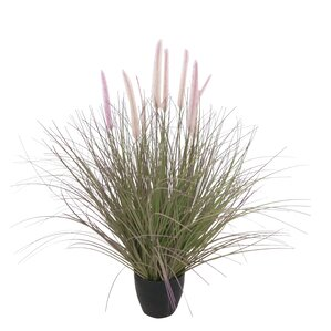 Camacho Faux Dogtail Tree in Pot