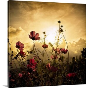 Watching the Sun Canvas Print