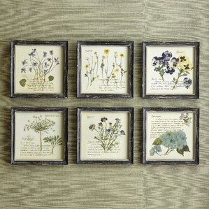 Pressed Flowers Framed Print (Set of 6)