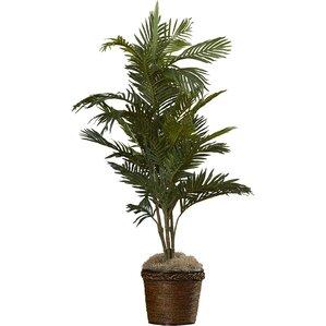 Faux Bermudiana Palm Tree in Basket