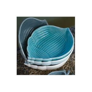 Glynn Shell Dessert Bowl