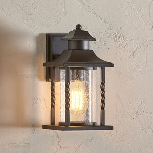 Newburgh Outdoor Wall Lantern