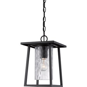 Pacifica 1-Light Outdoor Hanging Lantern