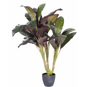 New2 Real Touch Dracaena Tree in Pot