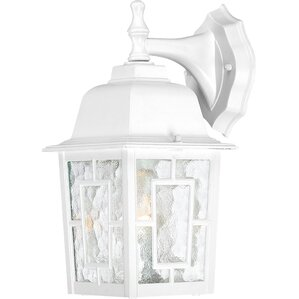 Sandrine 1-Light Outdoor Wall Lantern