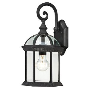 Graysville 1-Light Outdoor Wall Lantern