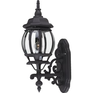 Coeymans 1-Light Outdoor Sconce