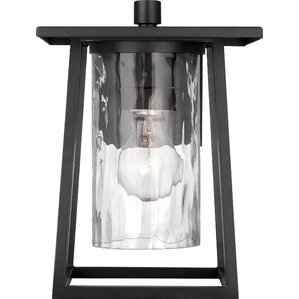 Pacifica 1-Light Outdoor Wall Lantern