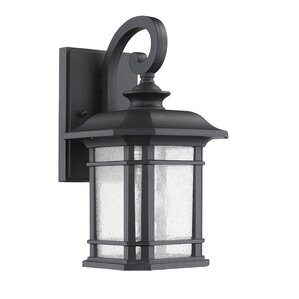 Reina 1-Light Outdoor Wall Lantern