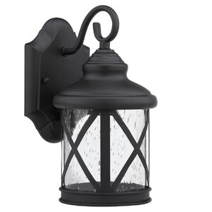 Brogden 1-Light Outdoor Wall Lantern