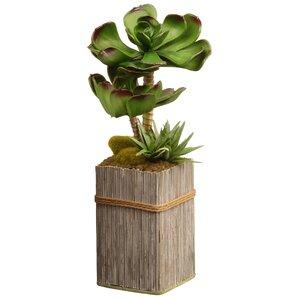 Faux Succulent in Decorative Wooden Pot