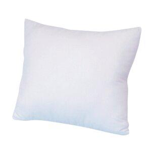 Euro Pillow (Set of 2)