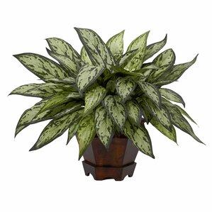Faux Silver Queen Plant in Decorative Planter