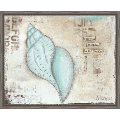 coastal seashell framed graphic art