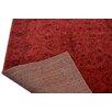 Caracella Elegance Red Area Rug