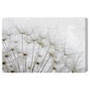 Oliver Gal Blow Away by Blakely Home Photographic Print Wrapped on Canvas