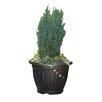 Gablemere 4 Piece Plant Pot Set