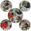 Certified International Botanical Veggies Pasta Bowl Set of 5
