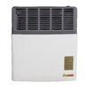Ashley Hearth 11,000 BTU LP Gas Direct Vent Heater