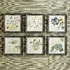 Birch Lane™ Pressed Flowers Framed Graphic Art Print (Set of 6)