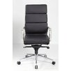 Ergonomics 4 Work Majestic High-Back Leather Executive Chair