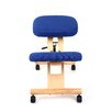 Ergonomics 4 Work Elite Low-Back Kneeling Chair