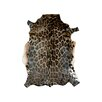 Pieles Pipsa Panther Brown Area Rug