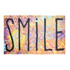 Pedrini LifeStyle-Mat Worn Smile Doormat