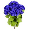 August Grove 7 Stems Artificial Full Blooming Stain Hydrangea