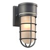 PLC Lighting Cage 1-Light Outdoor Sconce