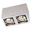 Paul Neuhaus Axena LED 2 Light Flush Ceiling Light