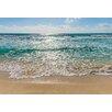 Komar Seaside 2.54m x 368cm Wallpaper Roll