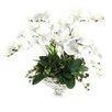 Dalmarko Designs Orchids in Pedestal Glass Bowl
