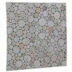 "Ecotessa Terra Riverbed 16.54"" x 16.54"" Teak Branch Mosaic Tile in Pearl"