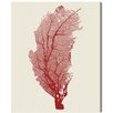 Oliver Gal 'Coral Rojo' Graphic Art Wrapped on Canvas