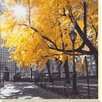 Camelot 'Park Pretty II' by Assaf Frank Photographic Print Unwrapped on Canvas
