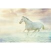 Marmont Hill Galloping Through the Water Photographic Print Wrapped on Canvas