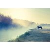 Marmont Hill Horse in the Fog Photographic Print Wrapped on Canvas