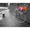 DEInternationalGraphics Bicycle of Love I by Assaf Frank Photographic Print