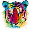 DEInternationalGraphics Tiger Pop by Patrice Murciano Painting Print