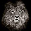 Pro-Art Lion Head Photographic Print on Canvas