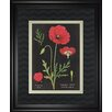 Classy Art Wholesalers 'Poppies Chart' by Sue Schlabach Framed Painting Print