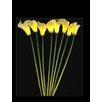 Hi-Line Gift Ltd. 8 Light Calla Lily with AC Adaptor