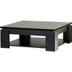 Riley Ave. Fabrizio Coffee Table with Storage
