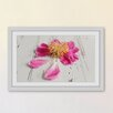 Marmont Hill 'Single Pink Peony' by Sylvia Cook Framed Photographic Print