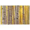 Oliver Gal 'Aspen Yellow' Photographic Print on Wrapped Canvas